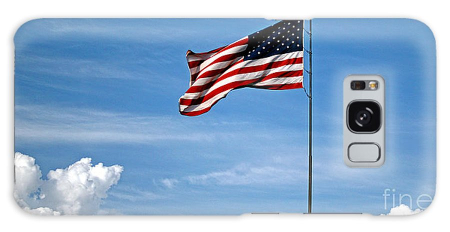 Us Flag Galaxy S8 Case featuring the photograph Flying High 7 Panoramic by Earl Johnson
