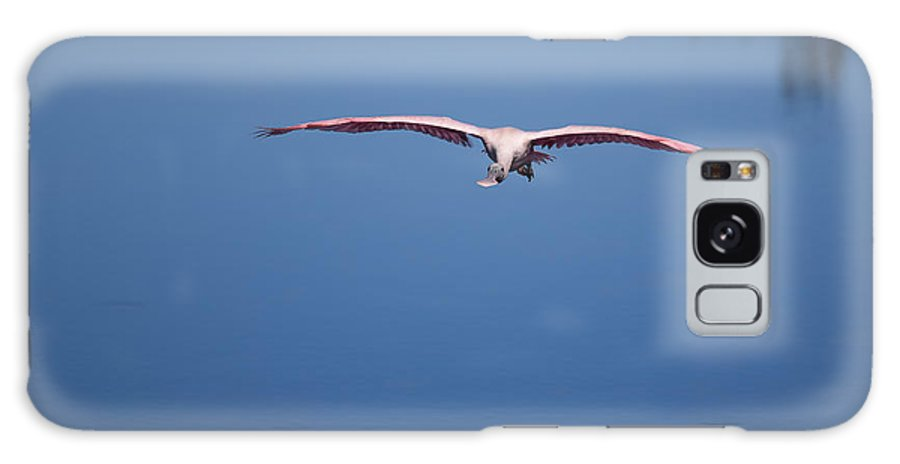 Birds Galaxy S8 Case featuring the photograph Flying Spoonbill by John M Bailey
