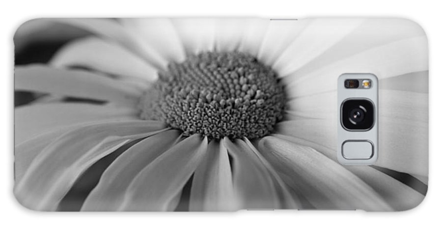 Flower Galaxy S8 Case featuring the photograph For My Daisy by Deena Otterstetter