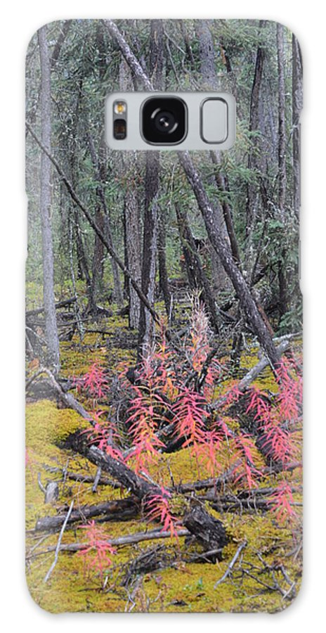 Forest Galaxy S8 Case featuring the photograph Forest Fire by Brian Boyle