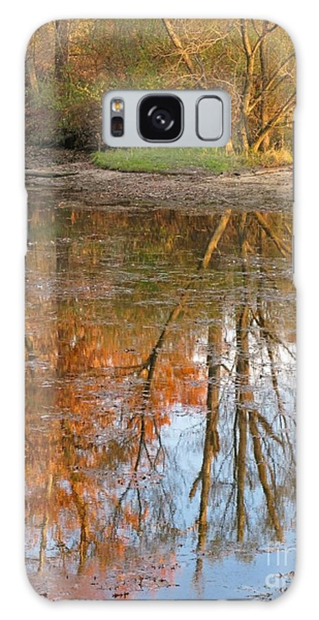 Autumn Galaxy S8 Case featuring the photograph Forest Glow by Ann Horn