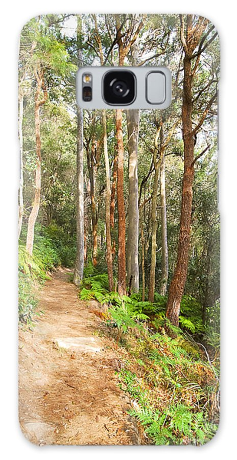 Forest Galaxy S8 Case featuring the photograph Forest Walk 19 by Christopher Edmunds