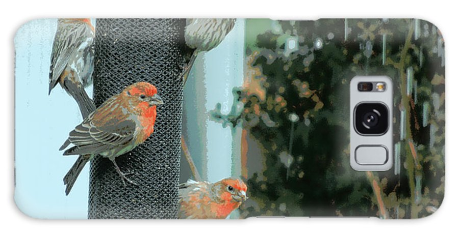 House Galaxy S8 Case featuring the photograph Four Finches Feeding by Heidi Manly