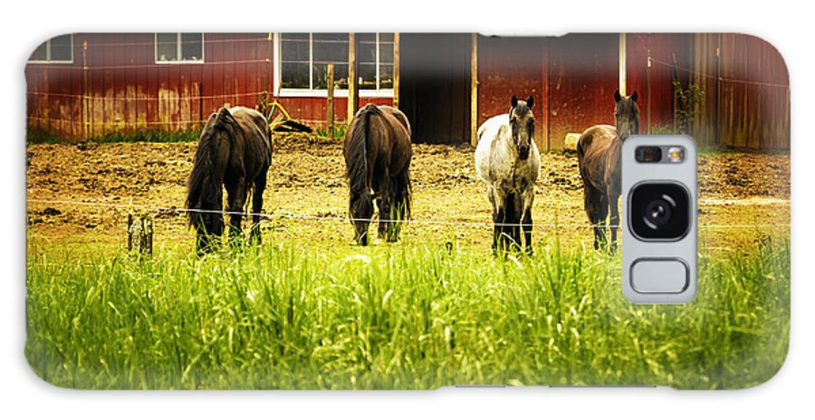 Horses Galaxy S8 Case featuring the photograph Four Horses by Belinda Greb