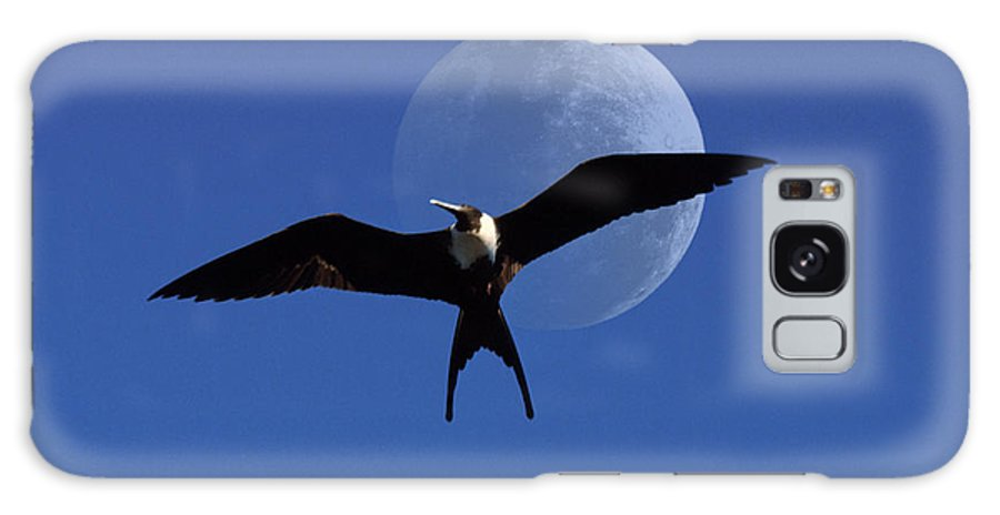 Frigate Galaxy S8 Case featuring the photograph Frigatebird Moon by Jerry McElroy