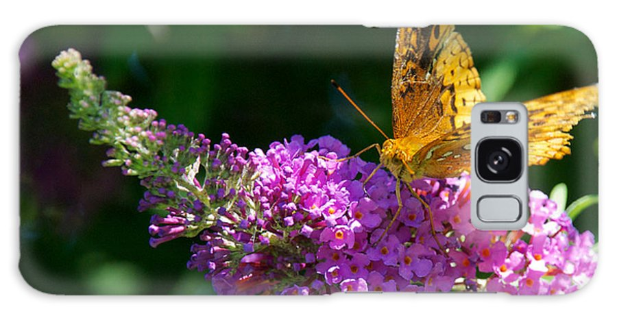 Bush Galaxy S8 Case featuring the photograph Fritillary Butterfly by Mark Dodd