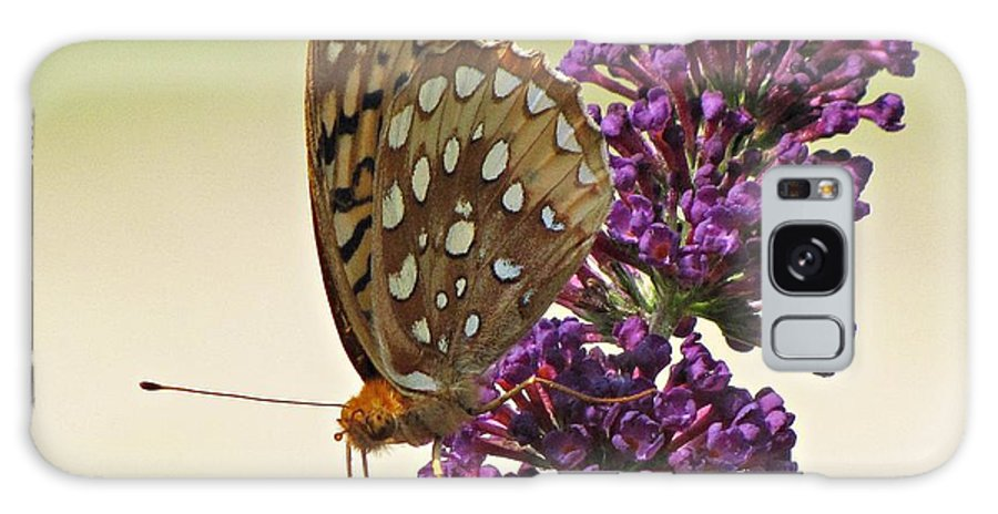 Butterfly Galaxy S8 Case featuring the photograph Fritillary Butterfly On Buddleia by MTBobbins Photography