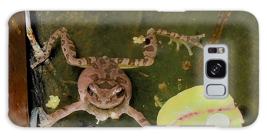 Frog Galaxy S8 Case featuring the photograph Frog Grabs Lotus Leaf by Deanne Rotta