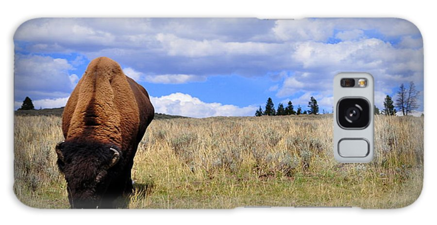 American Galaxy S8 Case featuring the photograph Frontview Of American Bison by Lisa Holland-Gillem