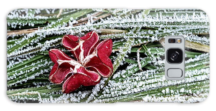 Flower Galaxy S8 Case featuring the photograph Frozen Flower by Mats Silvan