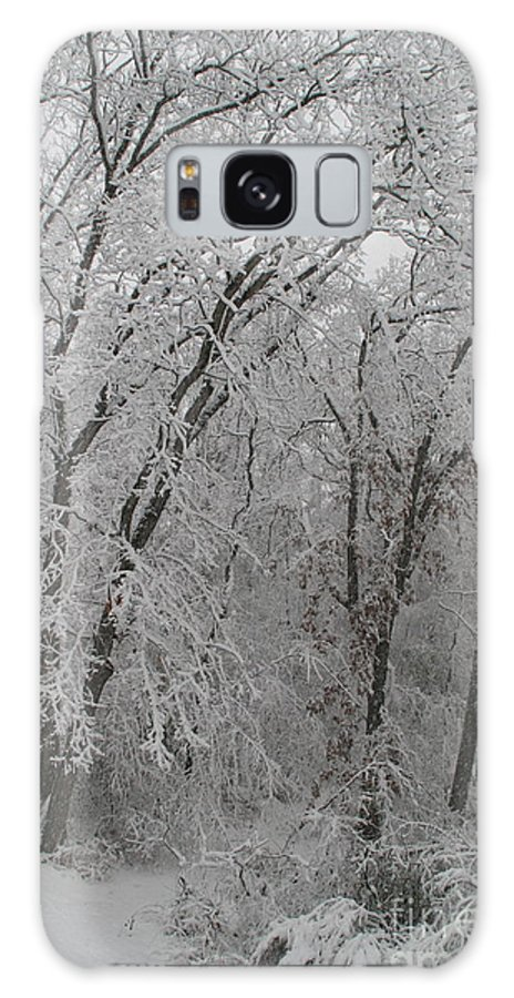 Galaxy S8 Case featuring the photograph Frozen Path by Debara Johnson