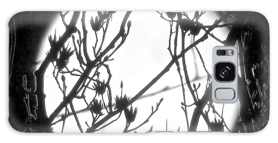 Full Moon Galaxy S8 Case featuring the photograph Full Moon And Poplar Branches by Jean Wright