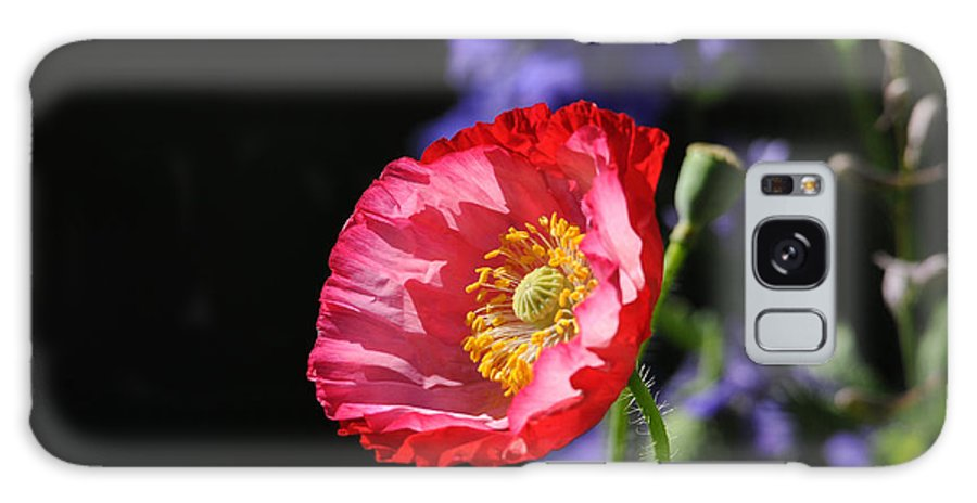 Poppies Galaxy S8 Case featuring the photograph Garden Delight by Lynn Bauer
