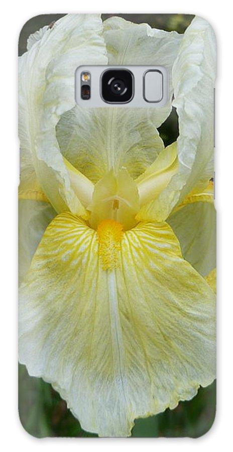 Beautiful Iris Galaxy S8 Case featuring the photograph Garden Fairy Of Sunset by Lingfai Leung