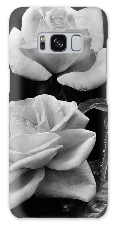 Flowers Galaxy S8 Case featuring the photograph 'george Arends' Roses by J. Horace McFarland