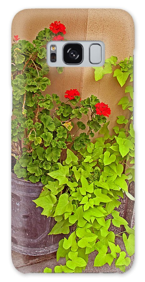 Floral Galaxy S8 Case featuring the photograph Geraniums And Ivy by Barbara McDevitt