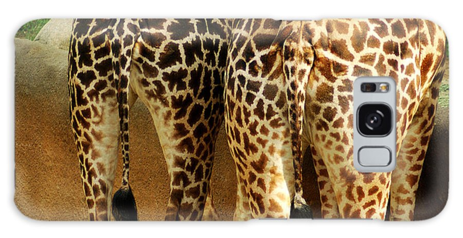 Hungry Galaxy S8 Case featuring the photograph Giraffe Butts 1 by Micah May