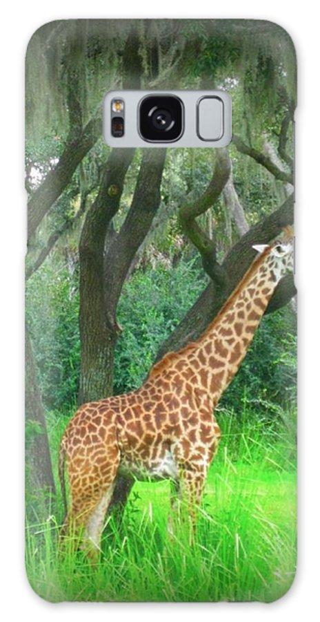 Giraffe Galaxy S8 Case featuring the painting Giraffe In Florida by John Malone