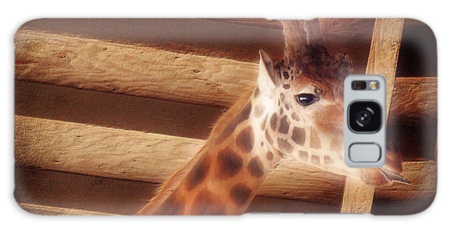 Giraffe Galaxy S8 Case featuring the photograph Giraffe Smarty by Melanie Lankford Photography