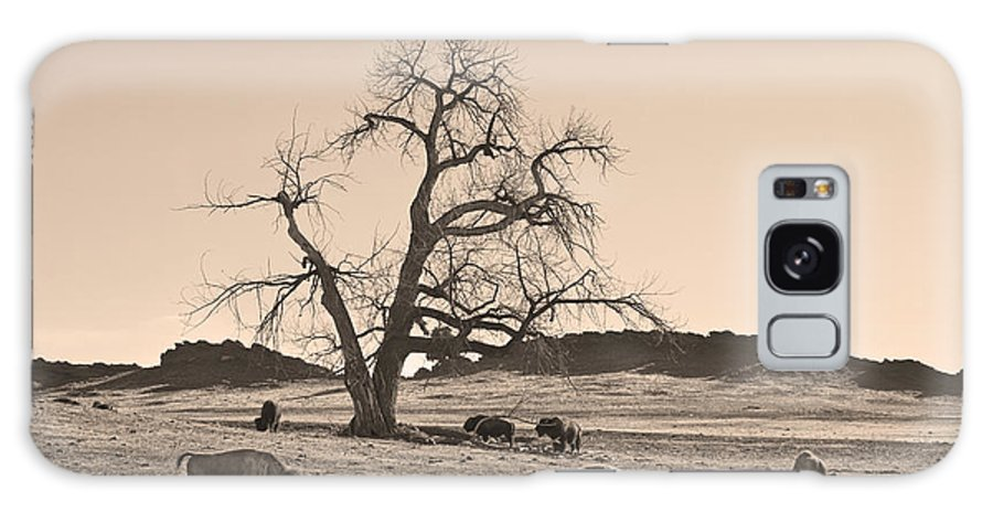 Buffalo Galaxy S8 Case featuring the photograph Give Me A Home Where The Buffalo Roam Sepia by James BO Insogna