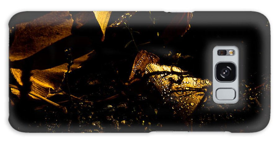 Raining Day Galaxy S8 Case featuring the photograph Glowing Leaves by Michael Bjerg