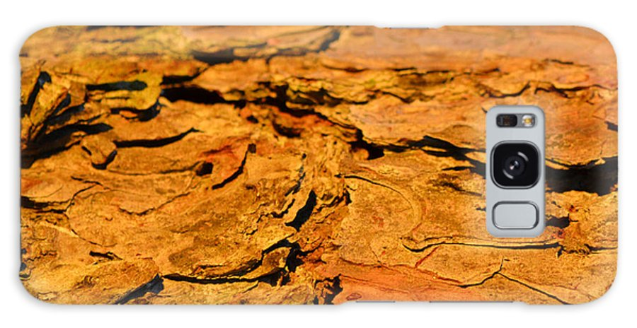 Pine Bark Galaxy S8 Case featuring the photograph Glowing Pine Bark by Beth Sawickie
