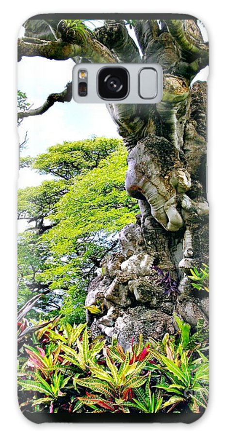 Gnarled Tree Galaxy S8 Case featuring the photograph Gnarled Tree by Phyllis Kaltenbach