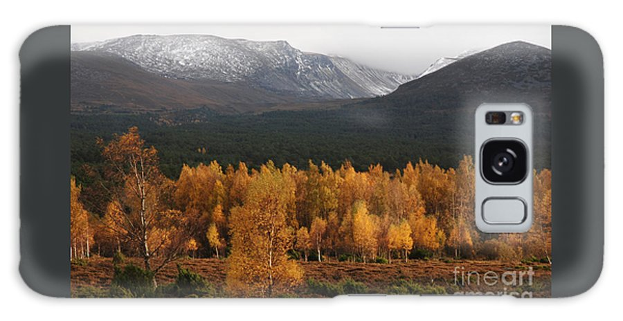 Autumn Gold Galaxy S8 Case featuring the photograph Golden Autumn - Cairngorm Mountains by Phil Banks