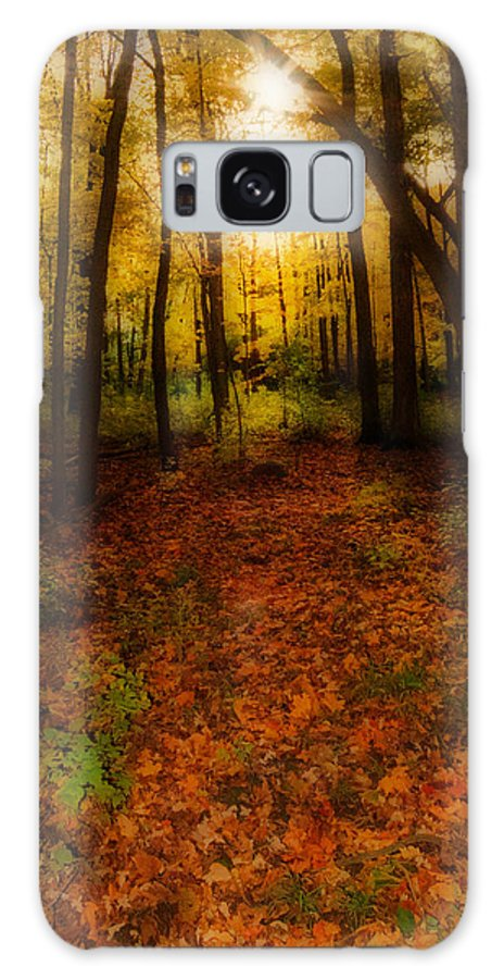 Autumn Galaxy S8 Case featuring the photograph Golden Autumn by Susan McMenamin