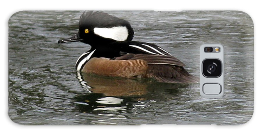 Duck Galaxy S8 Case featuring the photograph Hooded Merganser Reflections by Donna Brown