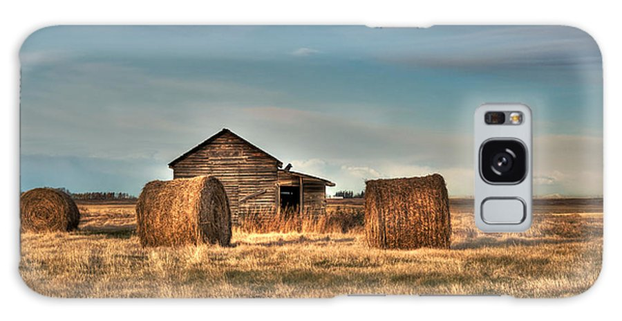 Texture Galaxy S8 Case featuring the photograph Golden Hay by Lisa Knechtel