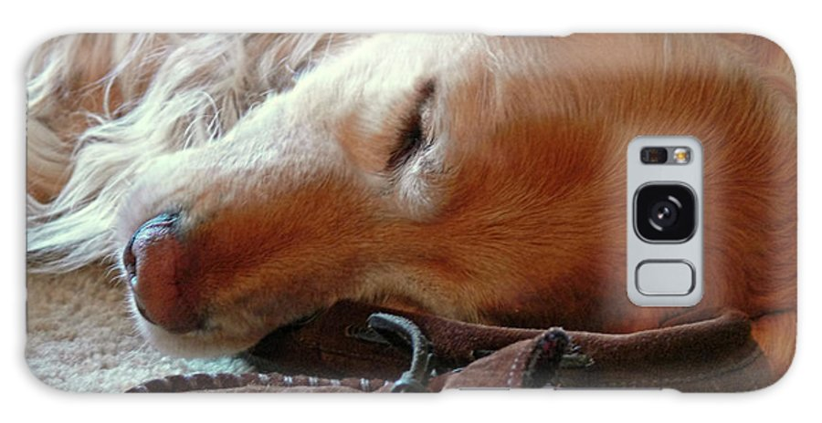 Golden Retriever Galaxy S8 Case featuring the photograph Golden Retriever Sleeping With Dad's Slippers by Jennie Marie Schell
