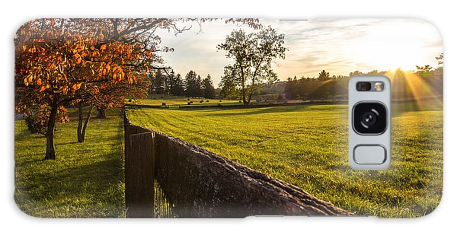 Autumn Galaxy S8 Case featuring the photograph Golden Sunset At The State Arboretum Of Virginia by Denise McLaurin