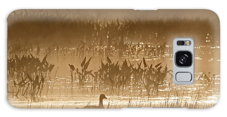 Goose Galaxy S8 Case featuring the photograph Goose Of The Mist by Lloyd Alexander