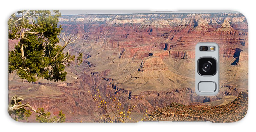 Grand Galaxy S8 Case featuring the photograph Grand Canyon 30 by Douglas Barnett