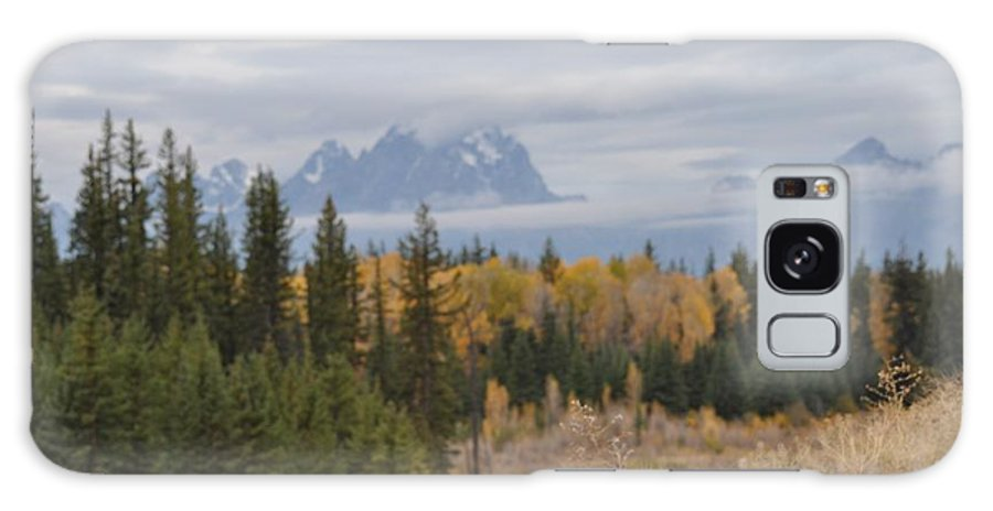 Trees Galaxy S8 Case featuring the painting Grand Tetons by Teresa Howell