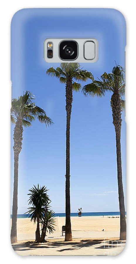 Catalonia Galaxy S8 Case featuring the photograph Graphic Image Of Palm Trees Blue Sky At Seaside by Peter Noyce