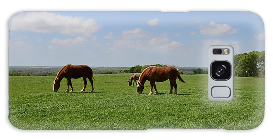 Horse Galaxy S8 Case featuring the photograph Grazing In The Field by Hilton Barlow