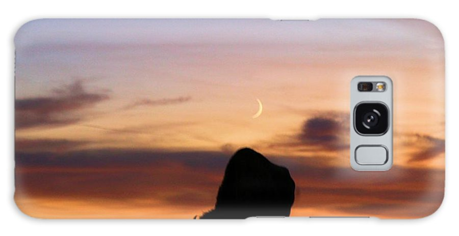 Theodore Roosevelt National Park Galaxy S8 Case featuring the photograph Grazing Under The Moon by Adam Jewell