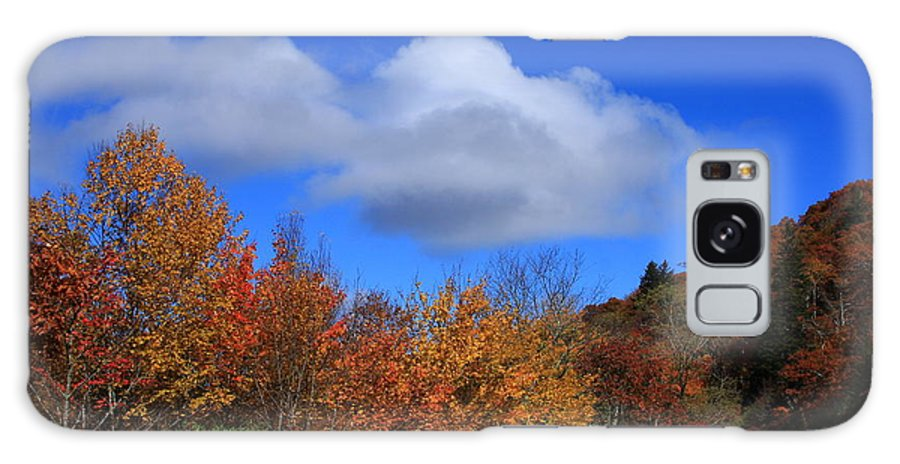 Great Balsam Mountains Galaxy S8 Case featuring the photograph Great Balsam Mountains In The Fall by Mountains to the Sea Photo