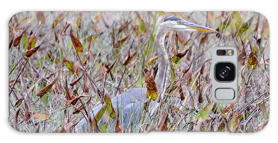 Fall Galaxy S8 Case featuring the photograph Great Blue Heron In Fall Marsh by Thomas Phillips