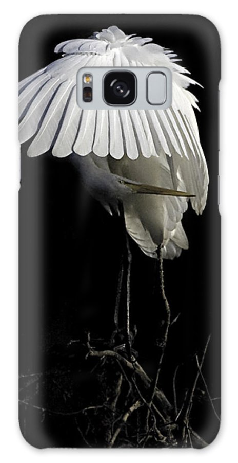 Egret Galaxy S8 Case featuring the photograph Great Egret Bowing by William Jobes