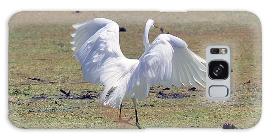 Cranes Galaxy S8 Case featuring the photograph Great Egret Dancing In Auroraville by Chris Tennis