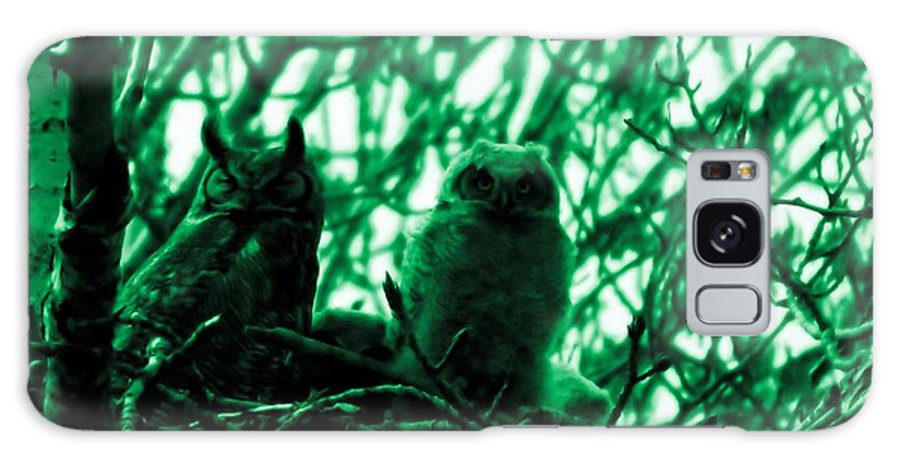 Owls Galaxy S8 Case featuring the photograph Great Horned Owl And Owlet by Jeff Swan