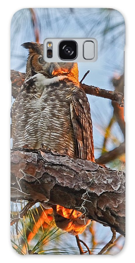 Great Horned Owl Galaxy S8 Case featuring the photograph Great Horned Owl At Sunset by Raymond Poynor
