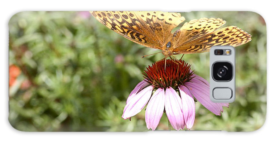 Butterfly Galaxy S8 Case featuring the photograph Great Spangled Fritillary by Robert Camp