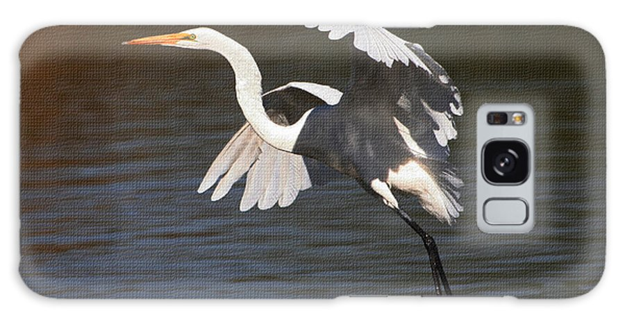 Greater Egret Landing Galaxy S8 Case featuring the photograph Greater Egret Landing by Tom Janca