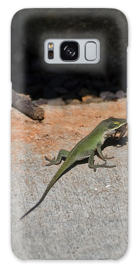Green Anole Lizard Galaxy S8 Case featuring the digital art Green Anole Lizard Vs Wolf Spider by Chris Flees