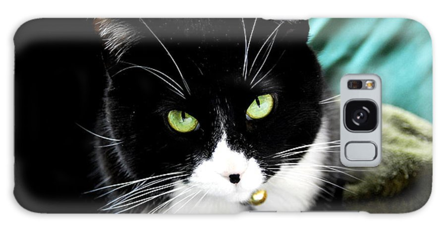 Cat Galaxy S8 Case featuring the photograph Green Eyed Queen by Meghan Cahilly