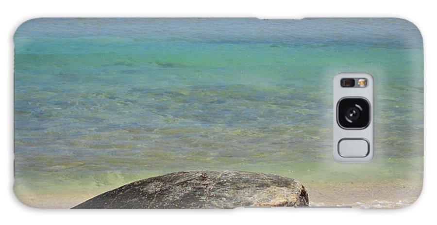 Green Galaxy S8 Case featuring the photograph Green Sea Turtle - Kauai by Shane Kelly